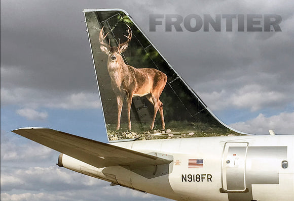 Frontier Airlines Tail Jake the Deer (PMCT4020)