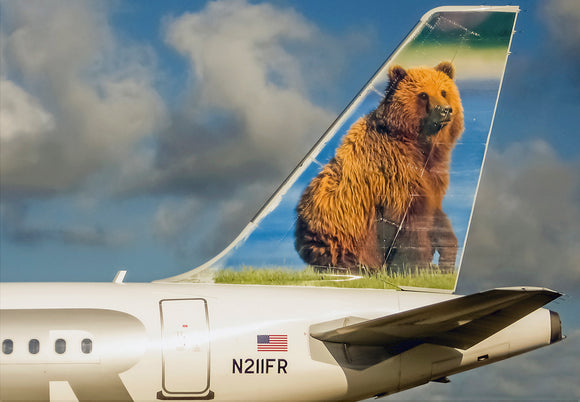 Frontier Airlines Tail Grizwald Grizzly Bear (PMCT4022)
