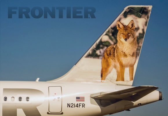 Frontier Airlines Tail Coyote (PMCT4023)