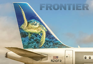 Frontier Airlines Tail Shelly The Sea Turtle (PMCT4024)