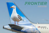 Frontier Airlines Miracle the Seagull Tail Logo (PMCT4034)