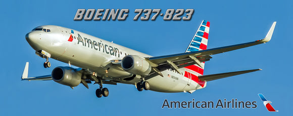 American Airlines Boeing 737-823 (PMT1514)