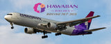 Hawaiian Airlines Boeing 767 (PMT1533)