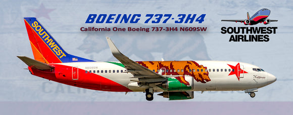Southwest Airlines Boeing 737-3H4 California One (PMT1630)