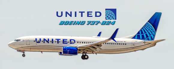 United Airlines Boeing 737-824 2019 Color (PMT1745)