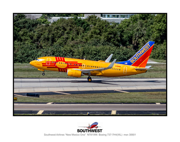 Southwest Airlines New Mexico One colors (TT117LGJM11X14)