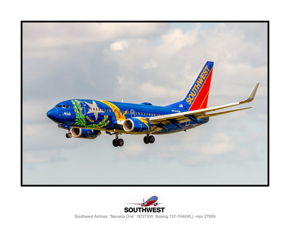 Southwest Airlines Nevada One colors  (TT193LAJM11X14)