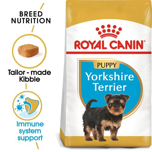 Royal Canin Yorkshire Terrier Puppy - Dry food for puppies up to 10 months old