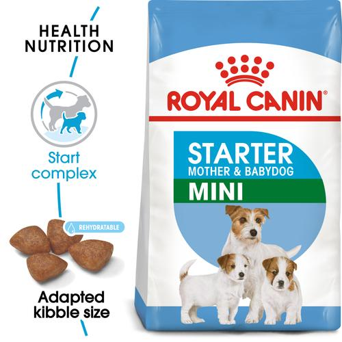 Royal Canin Mini Starter Mother & Babydog - Dry food for mini puppies. Adult weight up to 10 KG - Mother during gestation and lactation - Weaning puppies up to 2 months