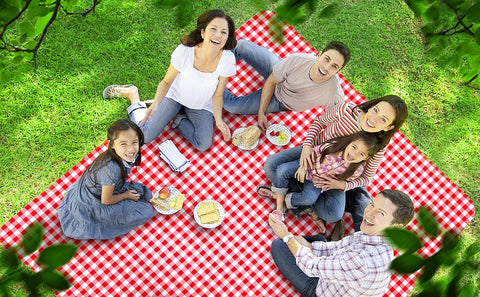 a group of people sitting on a blanket