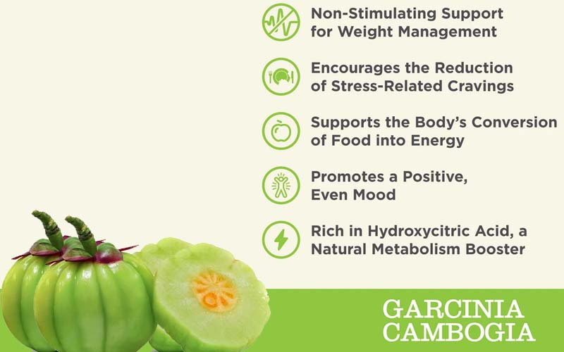 Garcinia cambogia, popular weight-loss supplement, Loss of excess weight, Hydroxycut help you lose weight