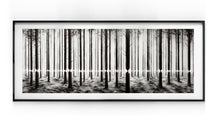 Load image into Gallery viewer, Linea - Pejac (2016)