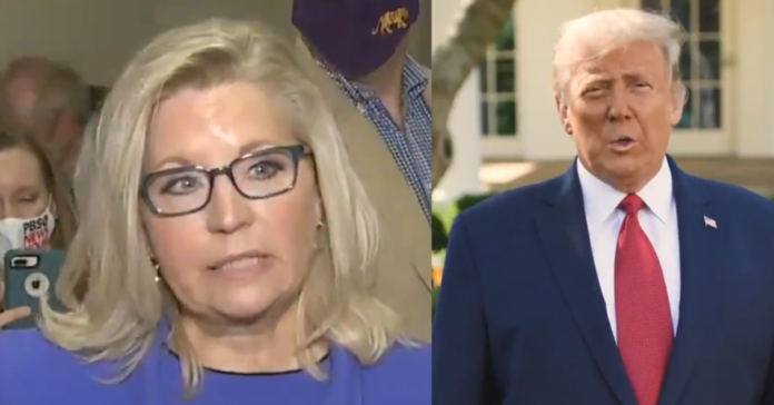 Liz Cheney Plans Revenge In Midterms, Dares Trump To Primary Her: 'Bring It On'