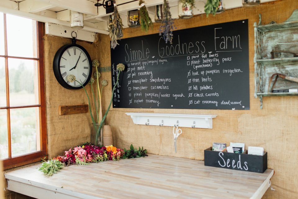 interior of upcycled garden shed with storage and garden plans