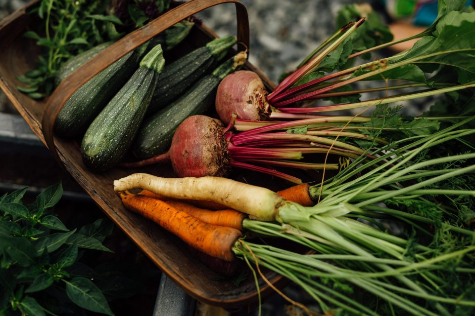 carrots, parsnips, and beets in a basket