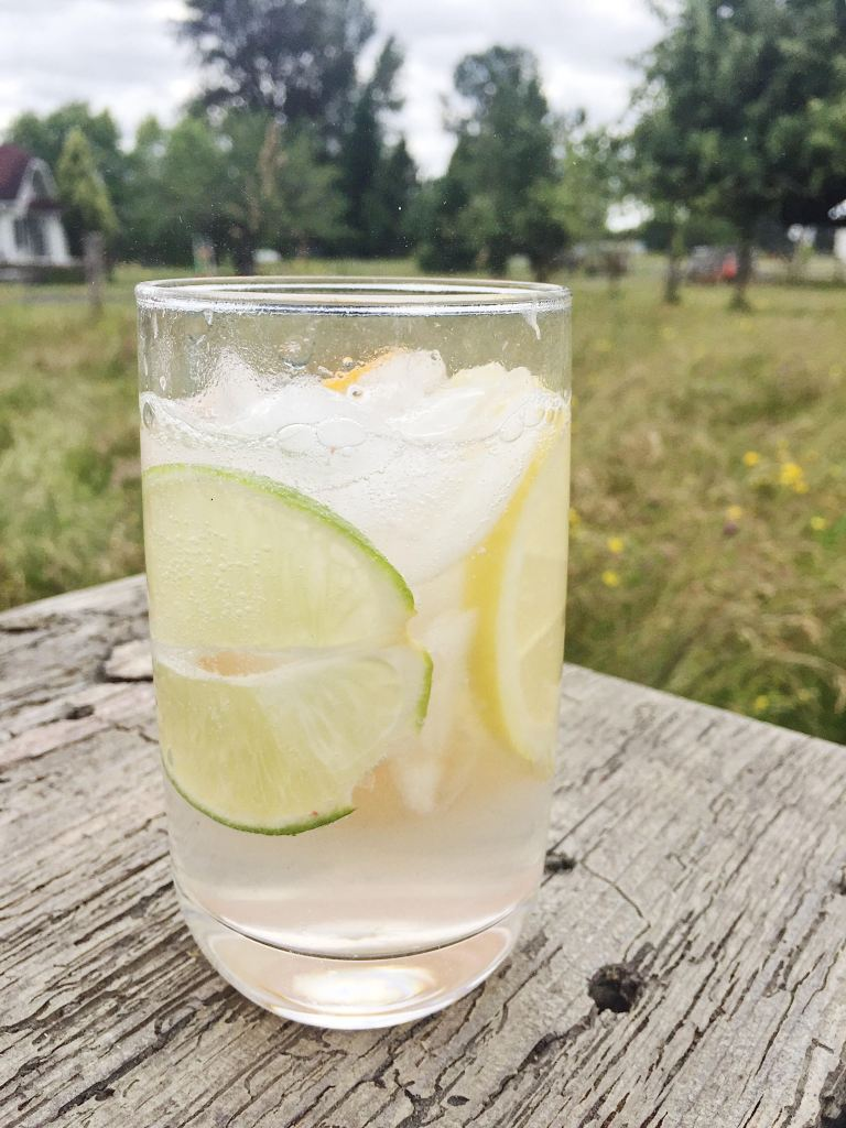 craft Gin and Toniccocktail with lemon and lime