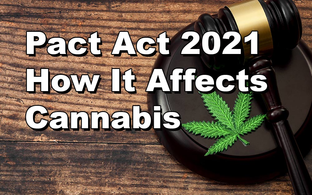 Pact Act 2021 - How It Affects Cannabis