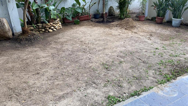 Garden soil and grass clean up service