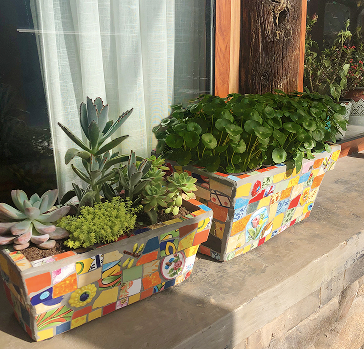 Featured rectangular green plant pots garden - Garden Plus