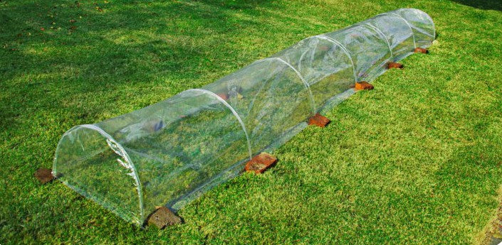 Long Arched Vegetable Antifreeze Waterproof Greenhouse