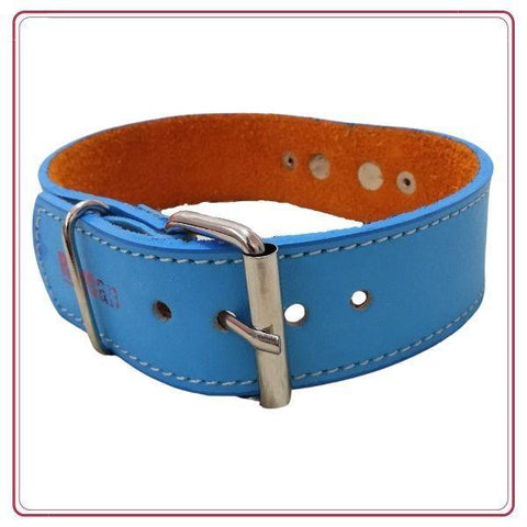 Collar de cuero REY Medium color Celeste - Ohana Vet Store