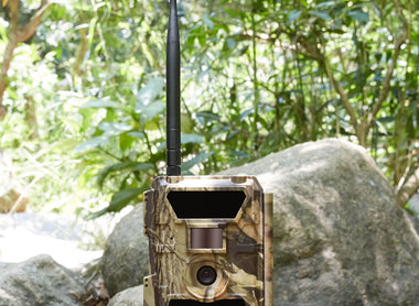 Top 5 Reasons to Choose A Cellular Trail Camera