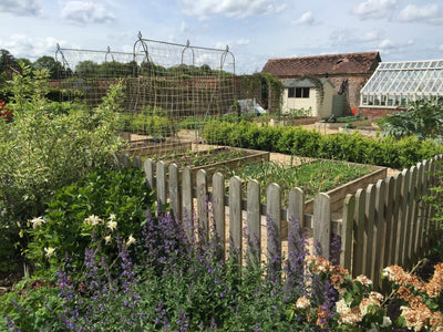 Planning a Spectacular Kitchen Garden