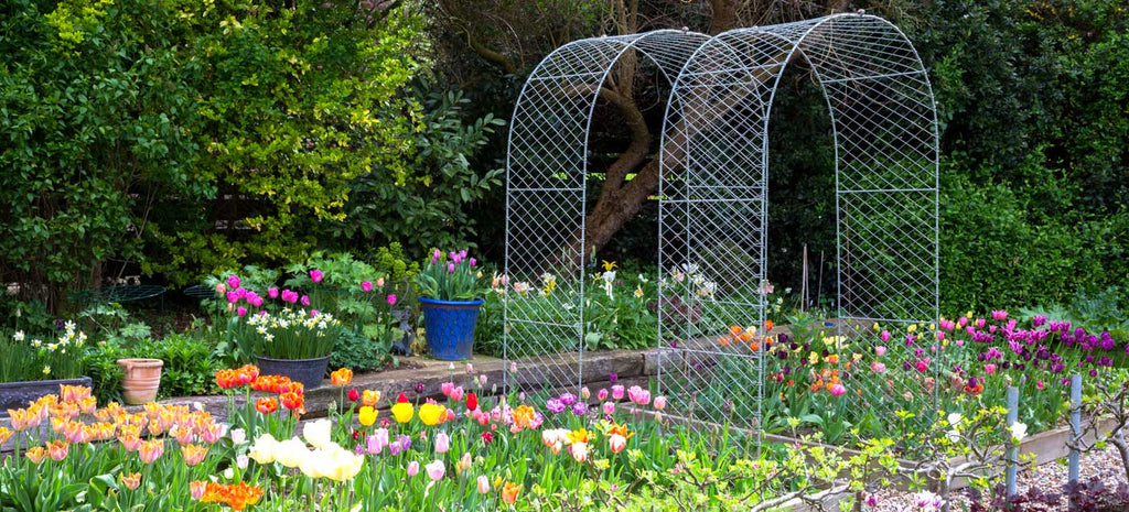 Agriframes Round arch with beautiful tulips