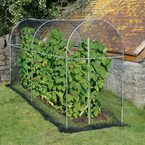 Long Domed Fruit Cage