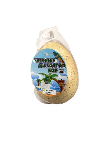 Hatching Alligator Egg