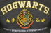 Harry Potter Unisex Embroidery T Shirt Hogwarts
