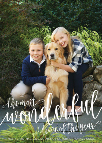 866 The Most Wonderful Time of the Year Photo Holiday Card
