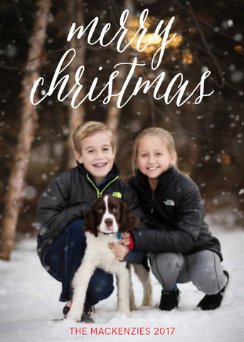 438 Merry Christmas Photo Holiday Card