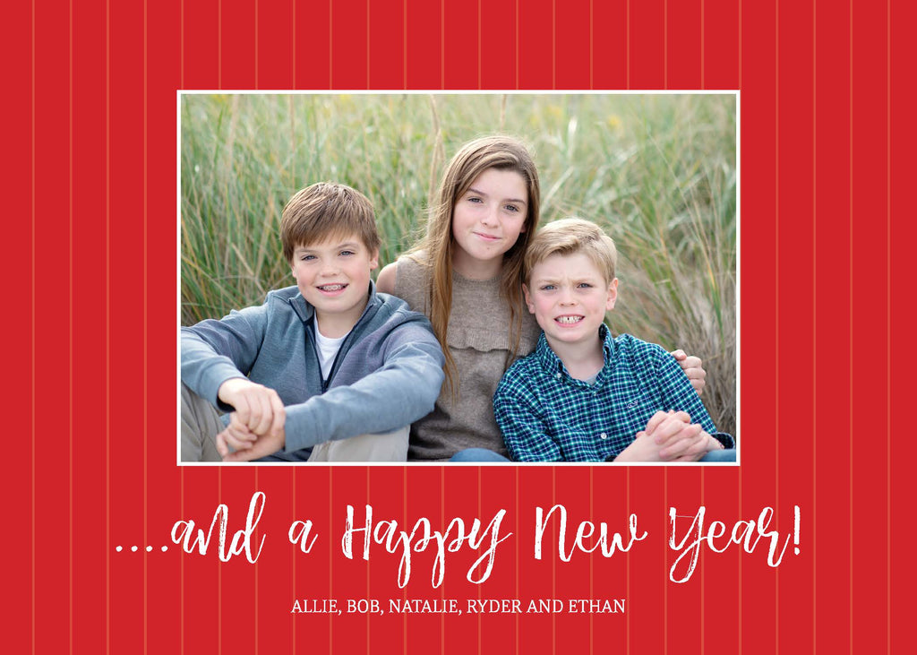 401 Wishing you Happiness Photo Holiday Card