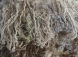 True wensleydale baby clip raw wool 2 bags raw usa see baby curl tip