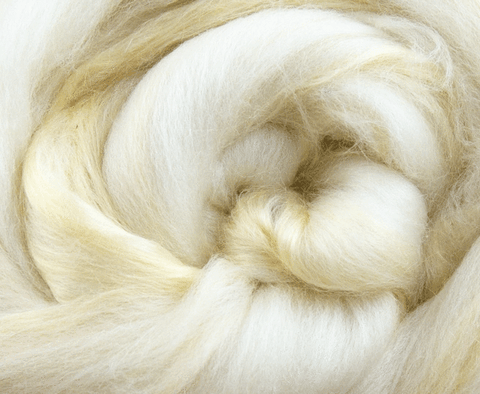 1lb Merino x Soybean Combed Top