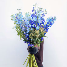 Load image into Gallery viewer, Elegant Blues Bouquet