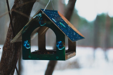 7 Eco friendly Gifts that Make a Real Difference - Treed Stories