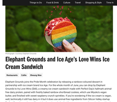Elephant Grounds and Ice Age's Love Wins Ice Cream Sandwich