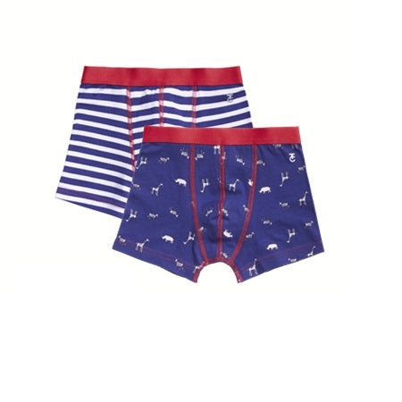 2 pack shorts | Animals