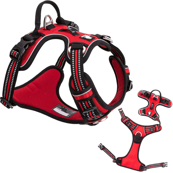 Soft Adjustable Safety Harness