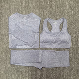 Fitness and Sportswear Suit