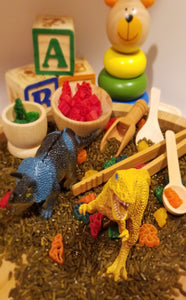 Dinosaur Mega Sensory Play Set - Kiddren