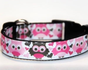 Owls with Hearts Dog Collar