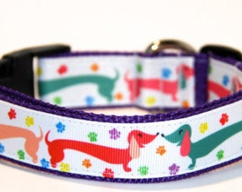 Wiener Dog Dog Collar