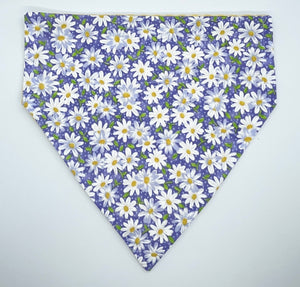 Daisy Dog Slip-on Bandana - on Purple or Teal Background
