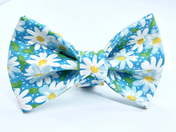 Daisy on Teal Doggy Bowtie