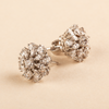 Regalia Beautiful Multi-Shaped Swarovski Zirconia Earrings
