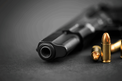 weapon and ammunition