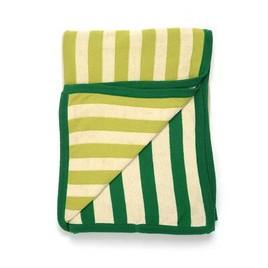 Sneaky Stripes Cotton Throw Blanket Green Darzzi Blankets - 2